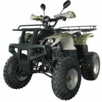 Квадроцикл Motoland ATV 250 ADVENTURE осенний лес
